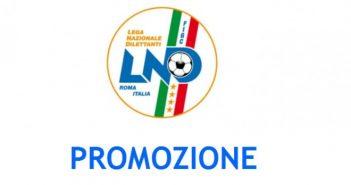 Dilettanti - Promozione, gironi e calendario del campionato